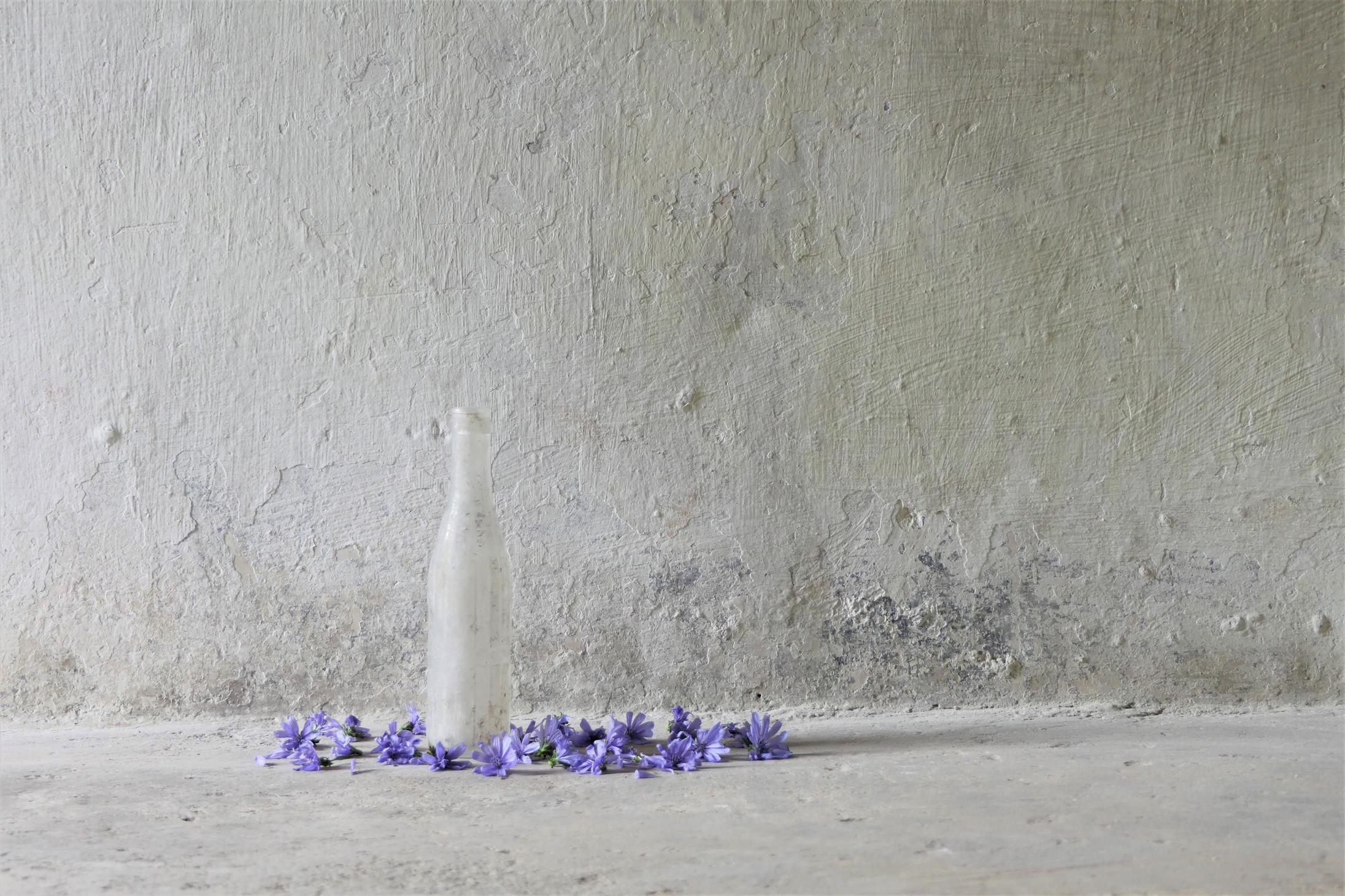 bott fiori(3)